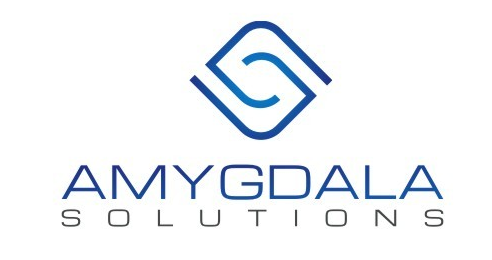 Amygdala Solutions - Albany Website Design